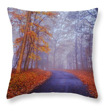 Journey Continues Throw Pillow by Rima Biswas