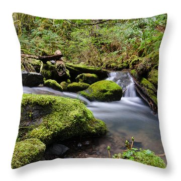Journey Downstream Throw Pillow