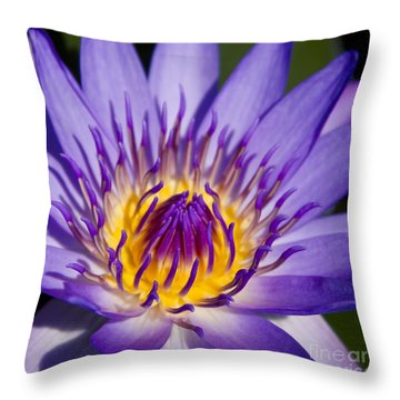 Journey Into The Heart Of Love Throw Pillow