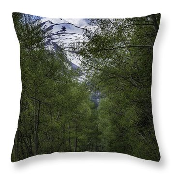 Journey Of Peace Throw Pillow