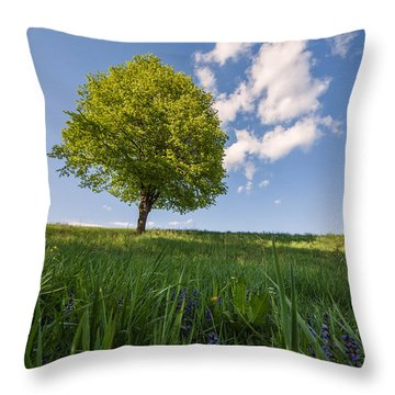 Throw Pillow featuring the photograph Joy by Davorin Mance