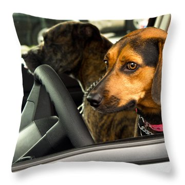 Joy Ride Throw Pillow by Christopher Holmes