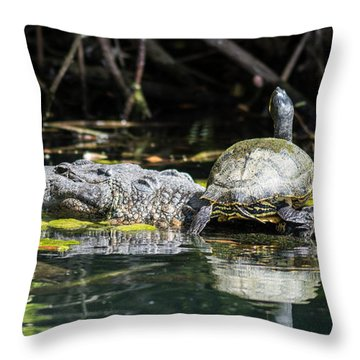 Joy Ride Throw Pillow