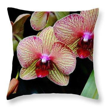 Joy Within Throw Pillow