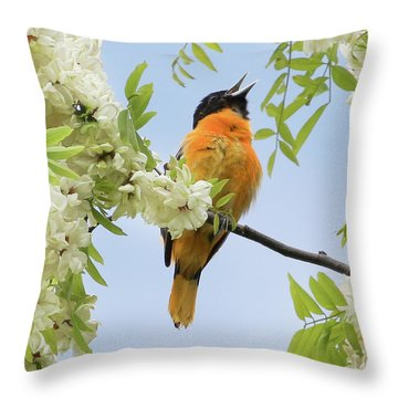 Joyful Oriole Throw Pillow