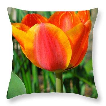 Joyful Tulip Throw Pillow