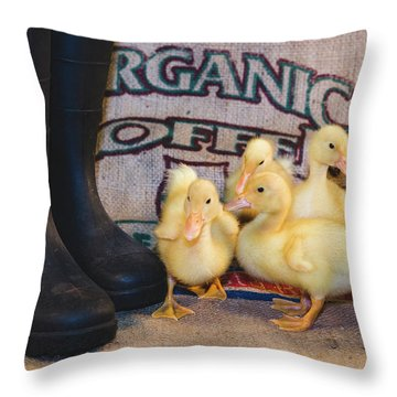 Throw Pillow featuring the photograph Joys Of Spring by Andrew Pacheco
