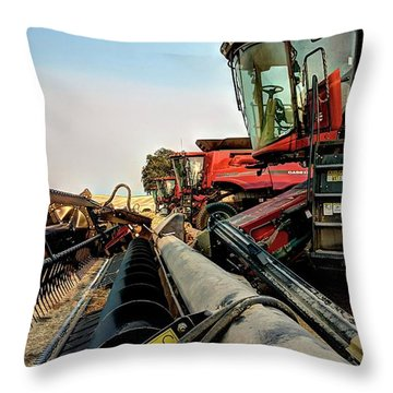 Jti 8240 6620 Throw Pillow