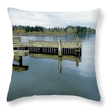 Juanita Bay In Gray Throw Pillow