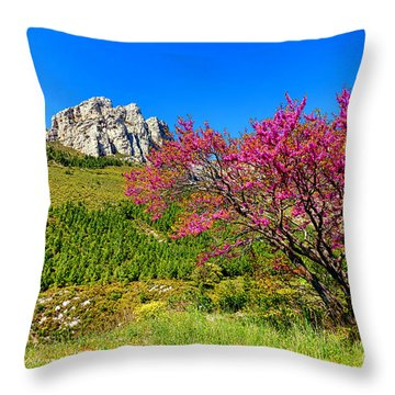 Throw Pillow featuring the photograph Judas Tree In Sainte Baume by Olivier Le Queinec