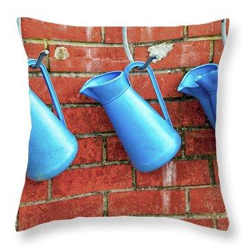 Jugs Throw Pillow