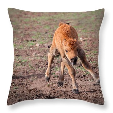 Jump For Joy Throw Pillow by Laurinda Bowling