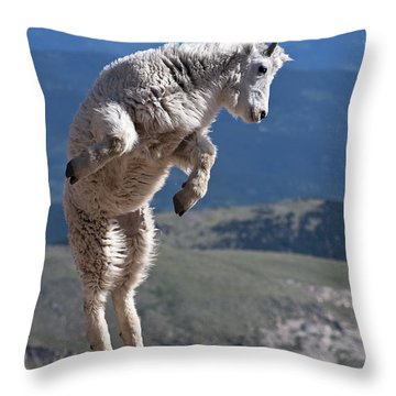 Throw Pillow featuring the photograph Jump by Gary Lengyel