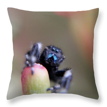 Jumping On Top Throw Pillow