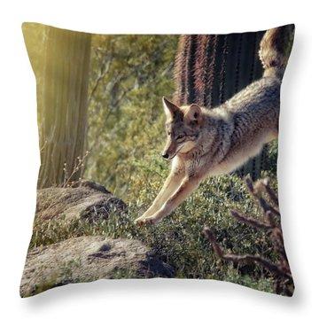 Jumping Rocks Throw Pillow by Elaine Malott