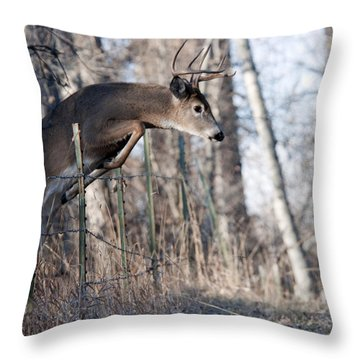 Jumping White-tail Buck Throw Pillow