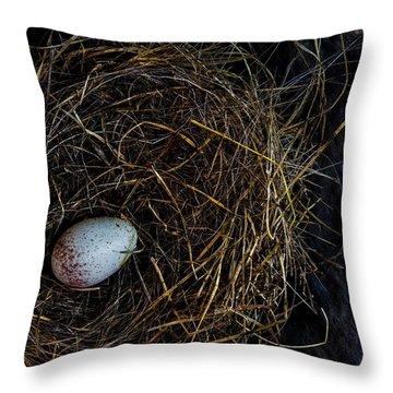 Junco Bird Nest And Egg Throw Pillow