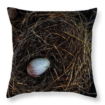 Junco Bird Nest And Egg Square Version Throw Pillow