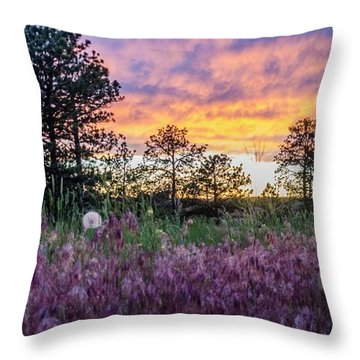 June Color At The Rimrocks Throw Pillow