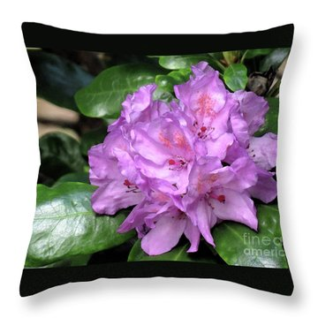 June Daphnoides Throw Pillow