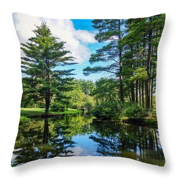 June Day At The Park Throw Pillow
