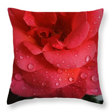 Throw Pillow featuring the photograph June  Rose  by Colette V Hera  Guggenheim