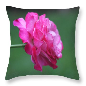 Throw Pillow featuring the photograph June Rose by Vadim Levin