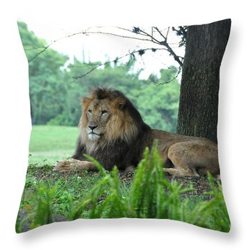 Throw Pillow featuring the photograph Jungle King by John Black