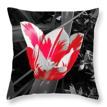 Throw Pillow featuring the photograph Jungle Love by Chad and Stacey Hall