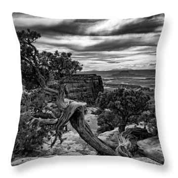 Juniper At Green River Throw Pillow