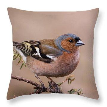 Juniper Bird Throw Pillow