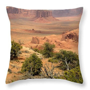 Juniper On The Mesa Throw Pillow by Fred Wilson