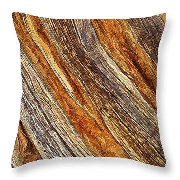 Juniper Texture Throw Pillow