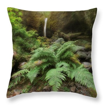 Jurassic Forest Throw Pillow by David Gn