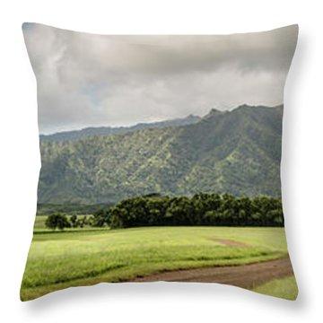 Jurassic Kahili Ranch Panorama Throw Pillow