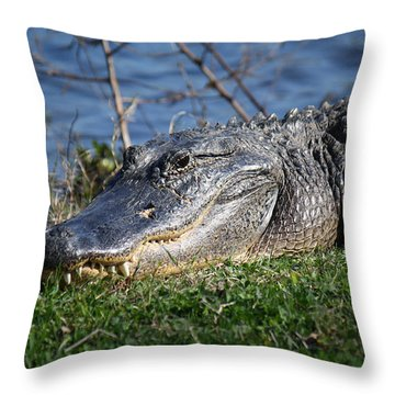 Just A Few Steps Closer Dear Throw Pillow by Roena King