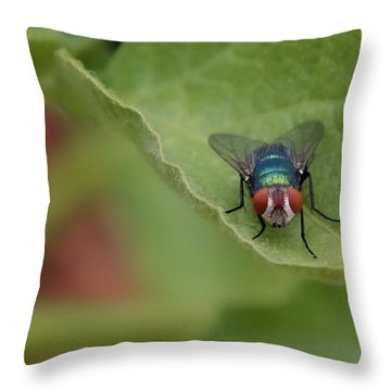 Throw Pillow featuring the photograph Just A Fly by Scott Holmes