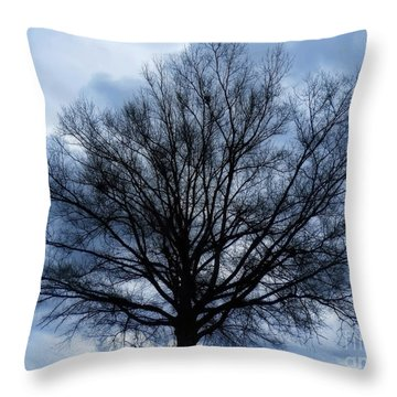 Throw Pillow featuring the photograph Just A Gray Blue Day by Sue Melvin