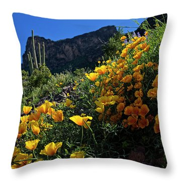 Just A Little Sunshine Throw Pillow
