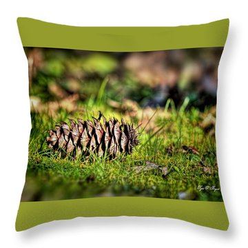 Just A Pinecone Throw Pillow