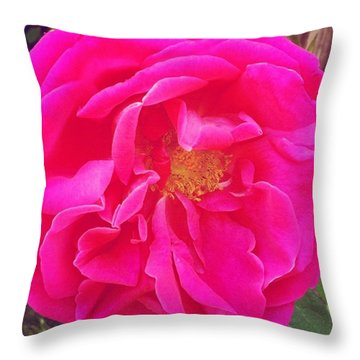 Just A Rose...#floral #flowers #pink Throw Pillow