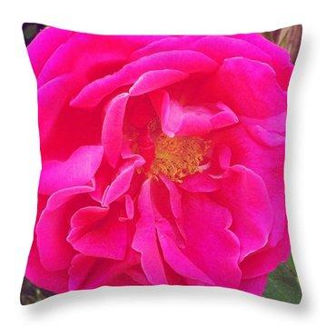 Just A Rose...#floral #flowers #pink Throw Pillow by Jennifer Beaudet