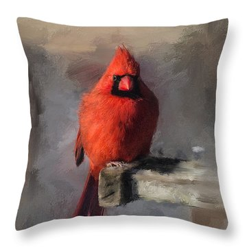 Just An Ordinary Day Throw Pillow