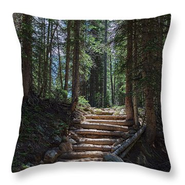 Throw Pillow featuring the photograph Just Another Stairway To Heaven by James BO Insogna