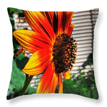 Just Another Sunflower Throw Pillow by Dustin Soph