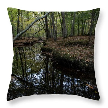 Throw Pillow featuring the photograph Just Around The Bend by Andrew Pacheco