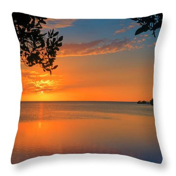 Just Beyond The Window Throw Pillow