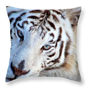 Just Call Me Gorgeous Throw Pillow