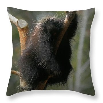 Just Chillin Throw Pillow by Ernie Echols