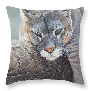Throw Pillow featuring the painting Just Chilling by Alan M Hunt